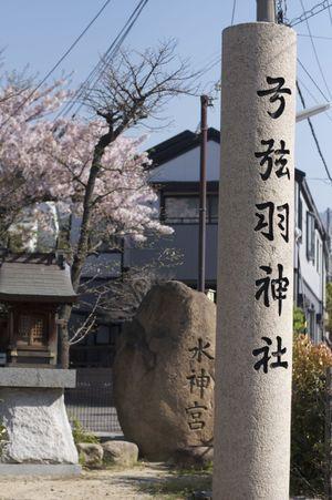 Sakura_l10